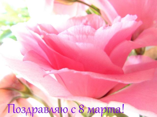 Листівки свята листівка з 8 березня