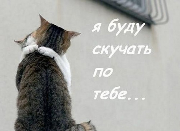 Автор: Bucka 02 Декабря, 16:41 1094 Отправлено ...: cards.tochka.net/ecards/4980-ya-budu-skuchat-po-tebe