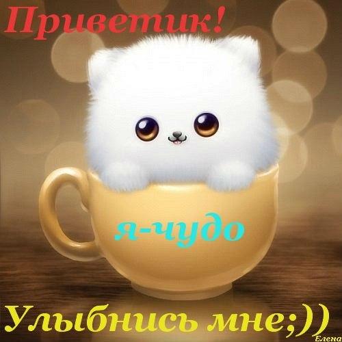 Автошкола москвы выходного дня