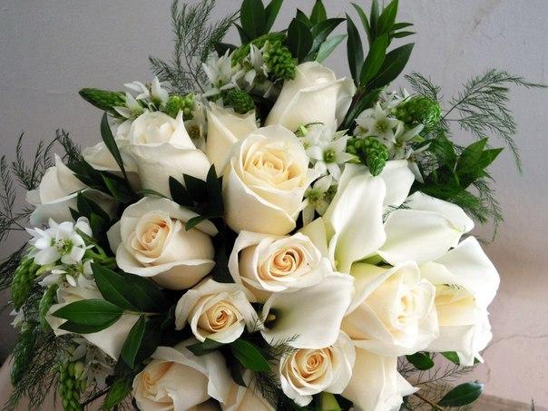 Цветы красивые букеты белые розы с