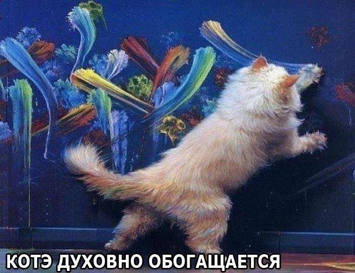 http://s0.tochka.net/cards/images/orig_4176bec371bb930025745a2d65a3df5a.jpg