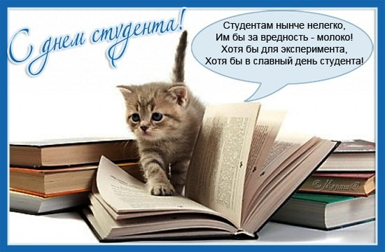 http://s0.tochka.net/cards/images/orig_8b2e1ae9c7201ba6cda2dfc859e4f90f.jpg