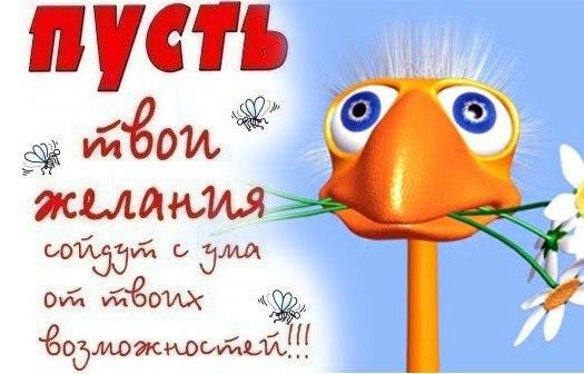 Поздравляем Машу с Днем Рождения! - Страница 4 Orig_8d9d82d932670bce95cc98b5c260cf70