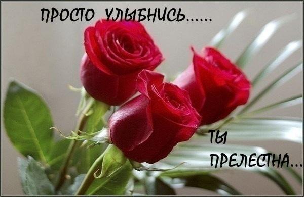 http://s0.tochka.net/cards/images/orig_9583f26b142fd3960ab26296a6c00e47.jpg