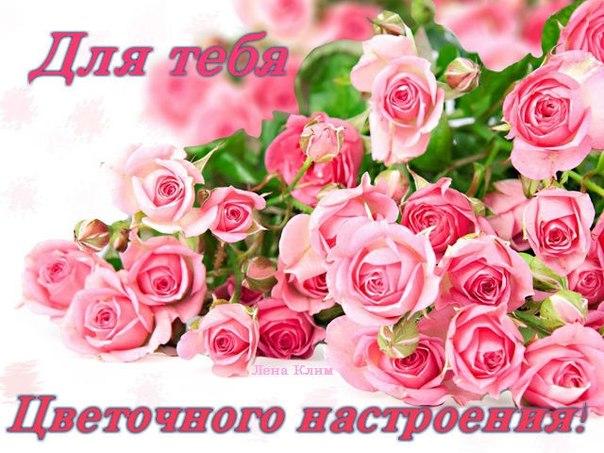 С днем рождения многомама Алла!!! - Многомама - на бэби.ру