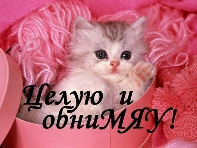 http://s0.tochka.net/cards/images/orig_f7fe021905f79fbdd34a485838358faf.jpg