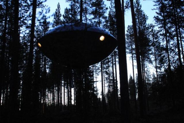 готель на дереві