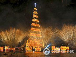 Самые красивые рождественские елки